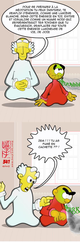 ZEM341